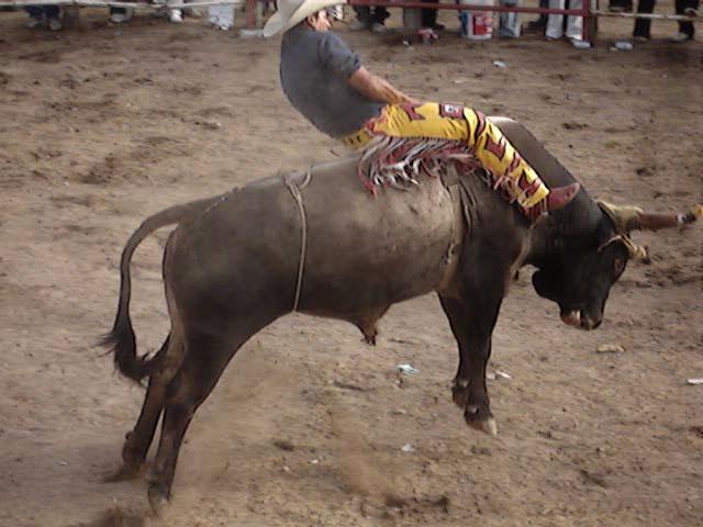 mexican bull rider